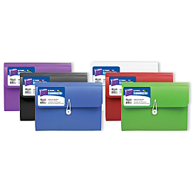 Poly Expanding File Case